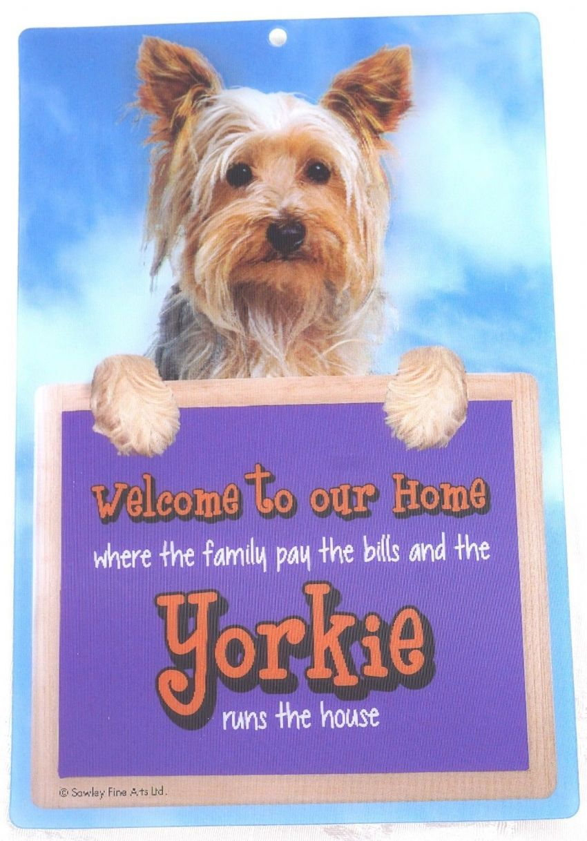 YORKSHIRE TERRIER 3D WELCOME SIGN STUNNING EYE CATCHING 23CM X 15CM SIGN FS641